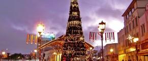 El árbol es un simbolo típico de las fiestas navideñas