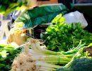 Verduras y hortalizas recién cosechadas. Foto: Patricia Balbontín