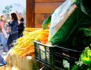 Las zanahorias triunfan entre los compradores. Foto: Patricia Balbontín
