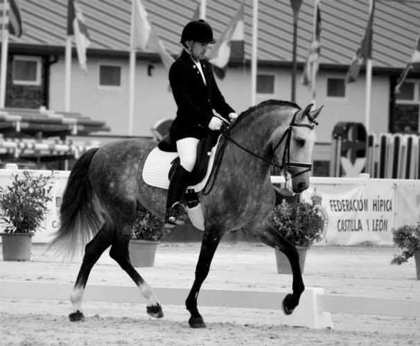 Iker Beitia con Absolut en un campeonato paraecuestre. Foto: Itziar Viana