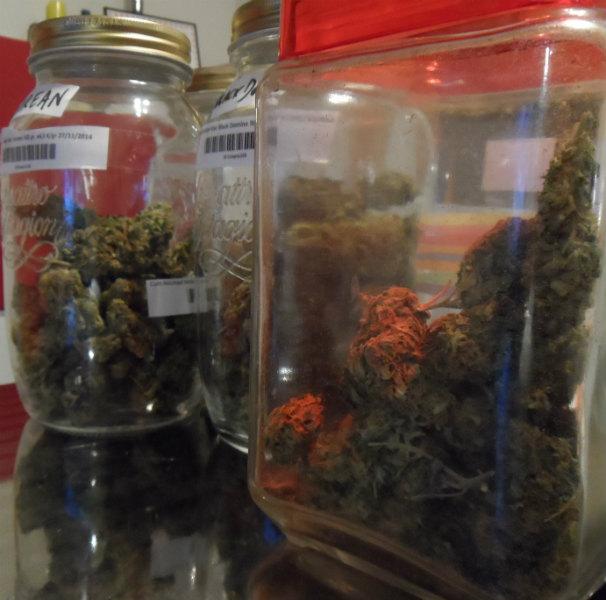 Marihuana preparada para su distribución. Foto: J.R.