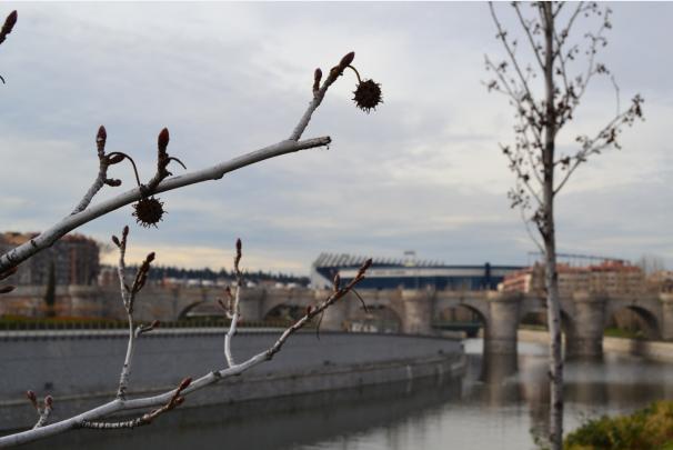 Al fondo, el puente de Toledo (silo XVII). Foto: MJ