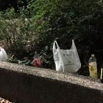 Bolsas de plástico y restos de un botellón