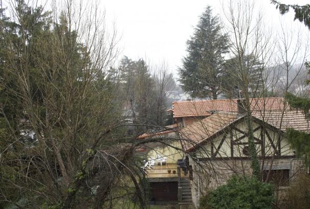 Un hogar entre el bosque