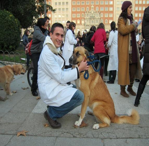 Un perro con su dueño