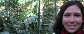Sarah Balet nunca ha visto un jardín tropical dentro de una estación de ferrocarril