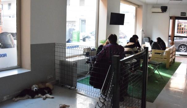 Ambiente en The Doger café. Foto: M. lozano
